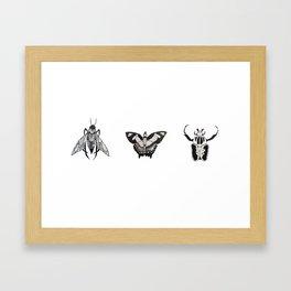 Ink Bugs Framed Art Print
