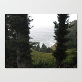 One Last Look Canvas Print