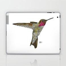 Hummingbird Ayre Laptop & iPad Skin