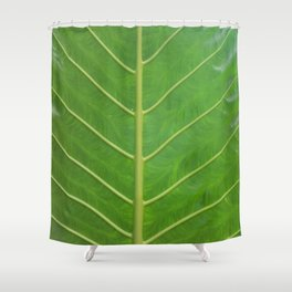 OVERLEAF Shower Curtain