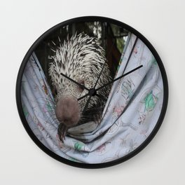 Pita Wall Clock
