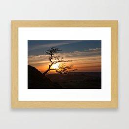 Black Mountain tree Framed Art Print