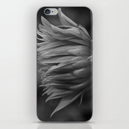 Shut Out the Darkness iPhone Skin
