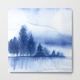 Winter scenery #11 Metal Print