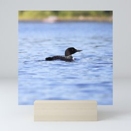 Watercolor Bird, Common Loon 03, Kejimkujic, Nova Scotia, Canada Mini Art Print