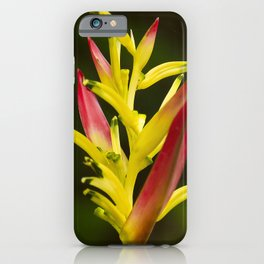 Colorful and Vibrant Hawaiian Tropical Wildflower iPhone Case