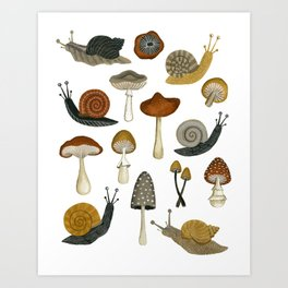 mushrooms and snails Art Print