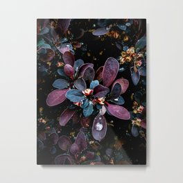 Barberry Adorned Metal Print