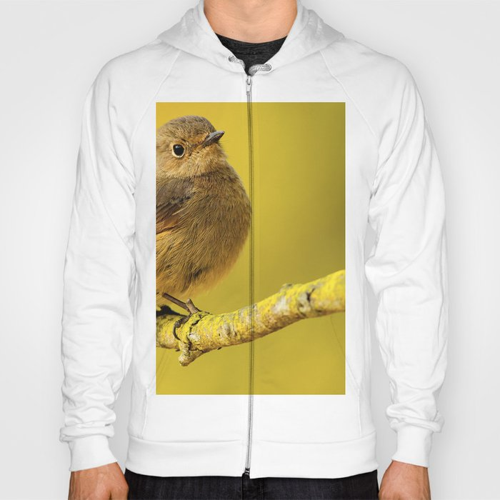 Yellow bird Hoody