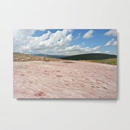 Watermelon Snow Metal Print