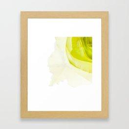 Green Rose Framed Art Print
