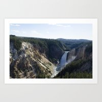 Lower Falls - Yellowstone National Park Art Print