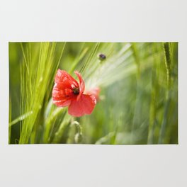Poppies in the cornfield Rug