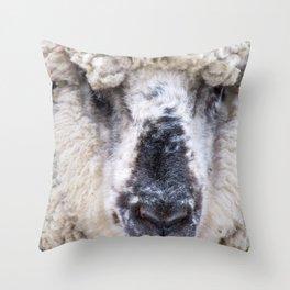 Spring Sheep Farm Animal Modern Country Farmhouse Art A411 Throw Pillow