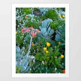 Succulents & Flowers Art Print