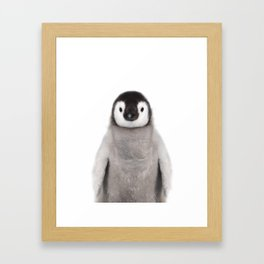 Baby Penguin Framed Art Print