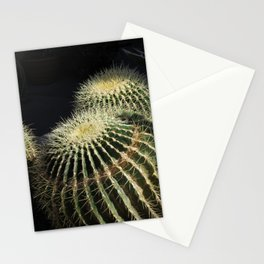 needles of barrel cactus in golden light Stationery Cards