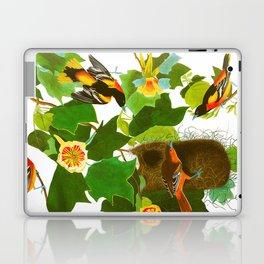 Baltimore Oriole Bird Laptop & iPad Skin