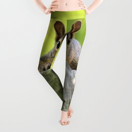 Relaxed Squirrel Leggings