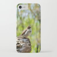 sparrow iPhone & iPod Cases featuring Sparrow by KimberosePhotography