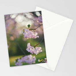 Cherry Tree Gorgeousness Stationery Cards