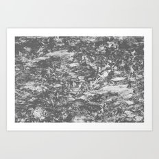 2538 Art Print