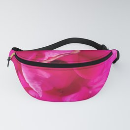closeup blooming pink rose texture abstract background Fanny Pack