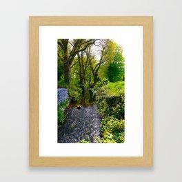 Peaceful Blarney Stream Framed Art Print