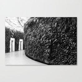 Fern Wall Canvas Print