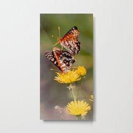 Butterfly Acrobats Metal Print