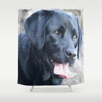 labrador Shower Curtains featuring Black Labrador by MehrFarbeimLeben