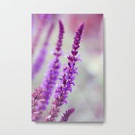 Purple Elevation Metal Print