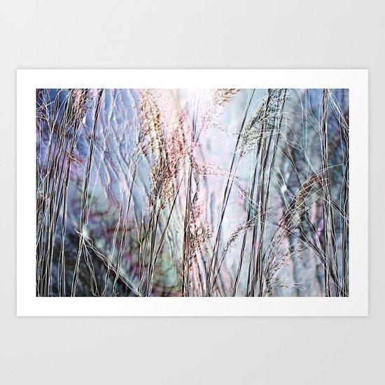 Magical Reeds - JUSTART (c) Art Print
