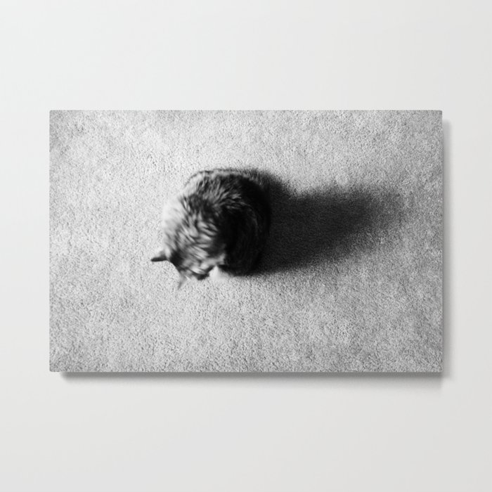 Aesthetic Black And White Cat 2 Metal Print