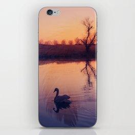 Sunset Duo iPhone Skin
