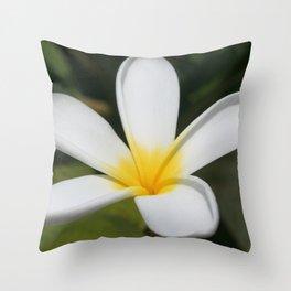 A Single Plumeria Flower Macro  Throw Pillow