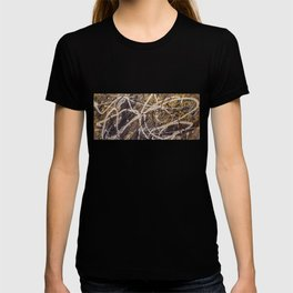 Verness painting T-shirt