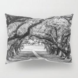 Louisiana Path Through the Oaks Pillow Sham
