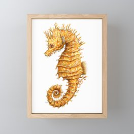 Sea horse, Horse of the seas, Seahorse beauty Framed Mini Art Print