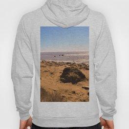 Elephant Seals on the California Coast Hoody