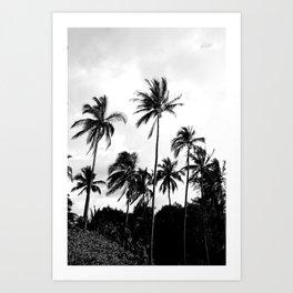 Palm Tree Noir #3 Art Print