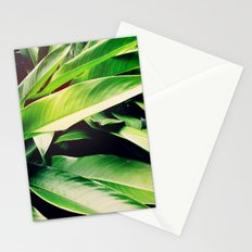 Leaves of Paradise Stationery Cards