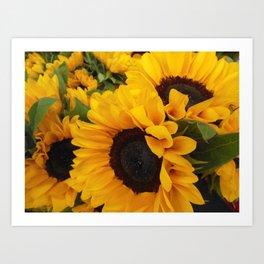 Sunflower Buffet Art Print