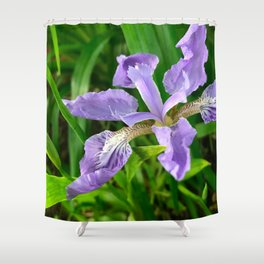 Purple Prize Shower Curtain