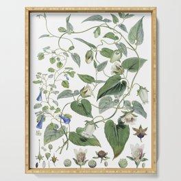 Botanical Leafy Bluebells Serving Tray