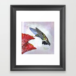 Hummingbird and Cactus Flower Framed Art Print