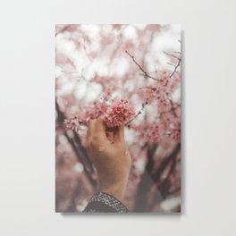 Pick Pink Flowers (Color) Metal Print