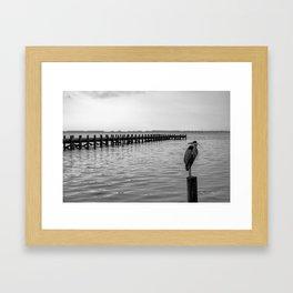 Serenity's Perch Framed Art Print