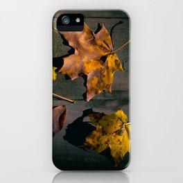 Fall Season in its many Shades. iPhone Case