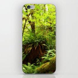 Rainforest Ferns iPhone Skin